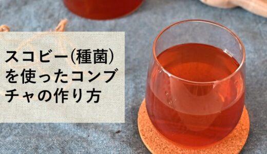 スコビー(種菌)を使ったコンブチャの作り方!アレンジレシピも紹介