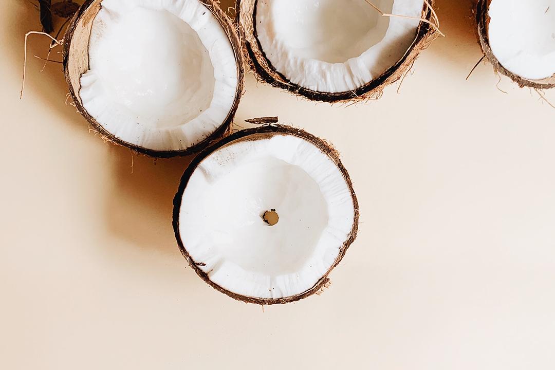 半分に割れたココナッツの実